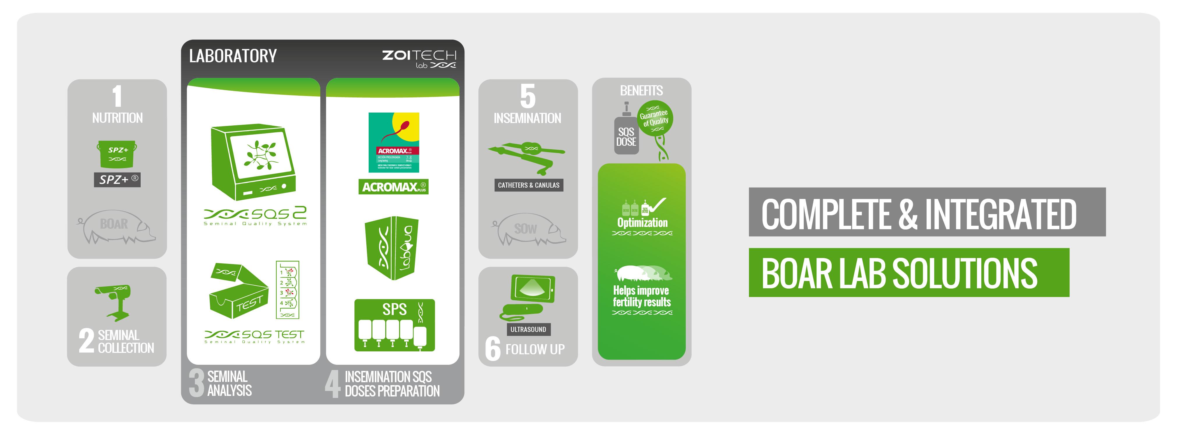Zoitech - Infografía